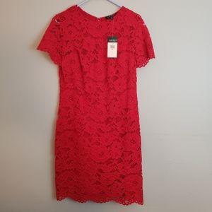 NWT Ralph Lauren Lace dress